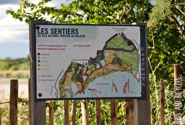 Réserve du méjean près de Montpellier (2)