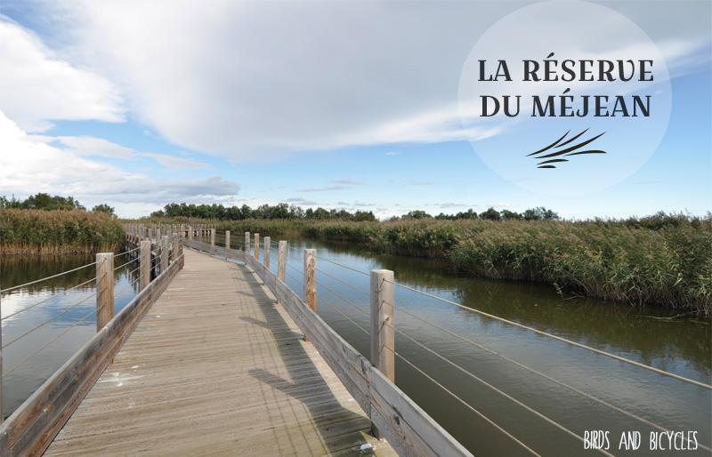 Réserve du méjean près de Montpellier