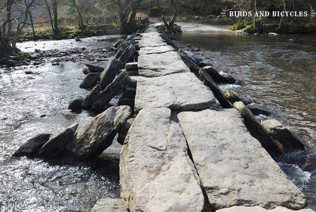 tarr steps_mini