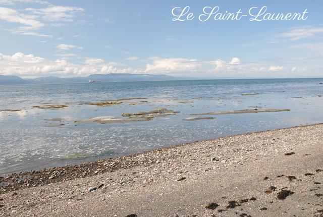 Balade nature sur l''Île aux Lièvres au Québec...