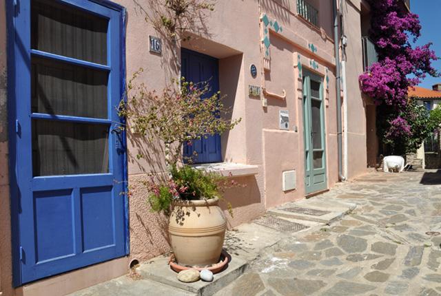 Collioure, une ville pleine de fleurs et de couleurs