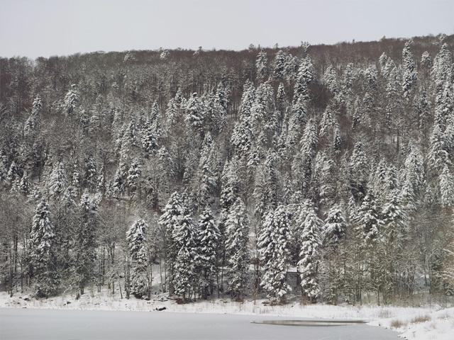 Photos: paysages enneigés sur le blog!