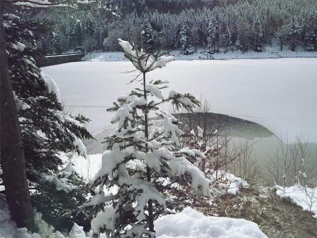 L'hiver dans les Vosges