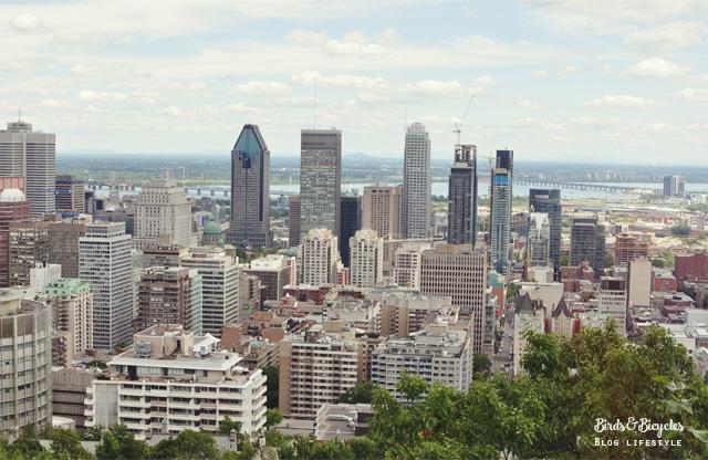 Vue sur Montréal du Mont-Royal!
