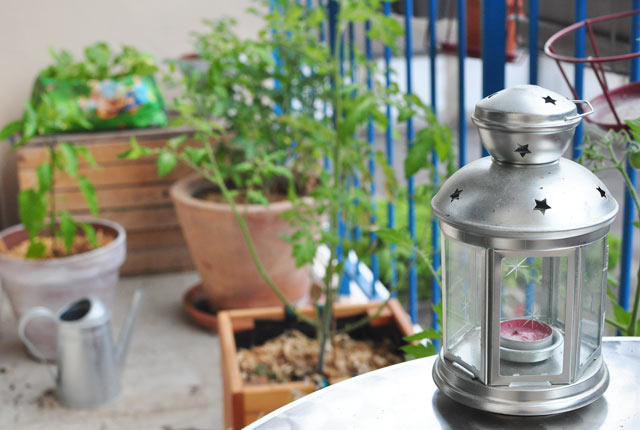 Mon petit jardin potager en pleine ville. Que planter sur son balcon? Je vous donne des idées.