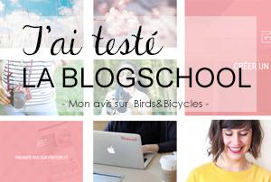 J'ai testé la blogschool et ses vidéos de conseil pour blogueuses