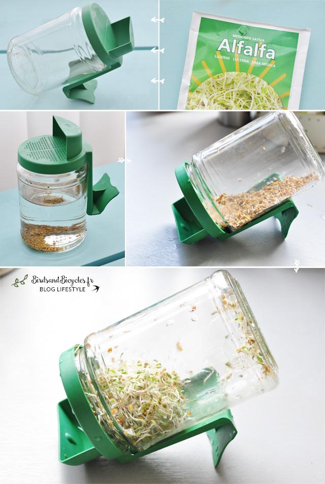 Mode d'emploi germoir bocal en verre - Graines germées