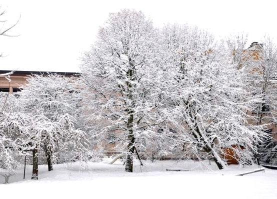 Chaux-de-Fonds-neige5