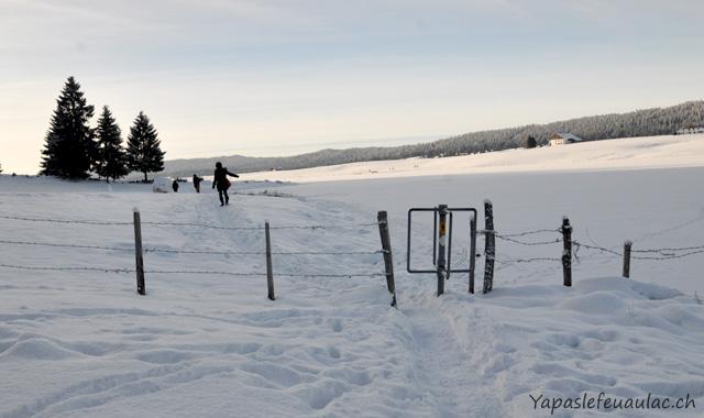 Promenade - Tour du lac des Taillères