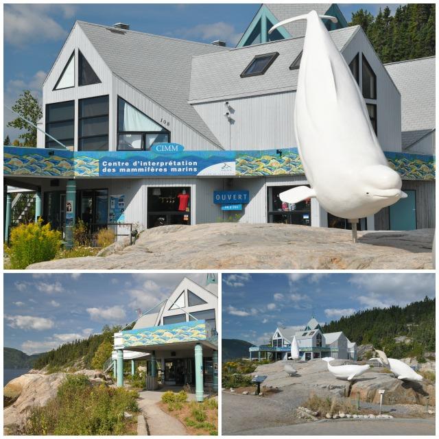 CIMM - Centre d'interprétation des Mammifères marins de Tadoussac