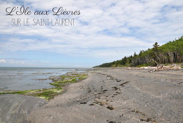 L'Ile aux Lievres sur le Saint Laurent