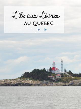 Un lieu que j'ai adoré au Québec, c'est l'Ile aux Lièvres! Un bout de terre sur le Saint-Laurent, un sanctuaire d'oiseaux... et en faisant la traversée en bateau, nous avons croisé des bélougas! Des moments magiques...
