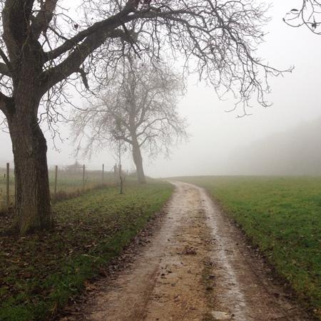 Le légendaire brouillard de Neuchâtel (Suisse)