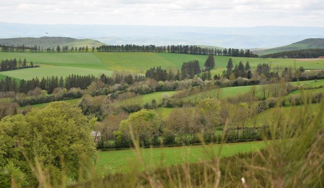 Pays de Cocagne - Vacances dans le Tarn