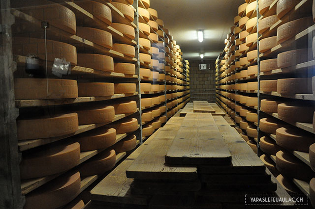 Visite fromagerie Les Martels