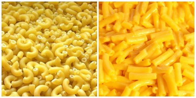 coquillette et macaroni