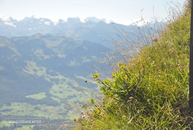 Chez Heidi en Suisse