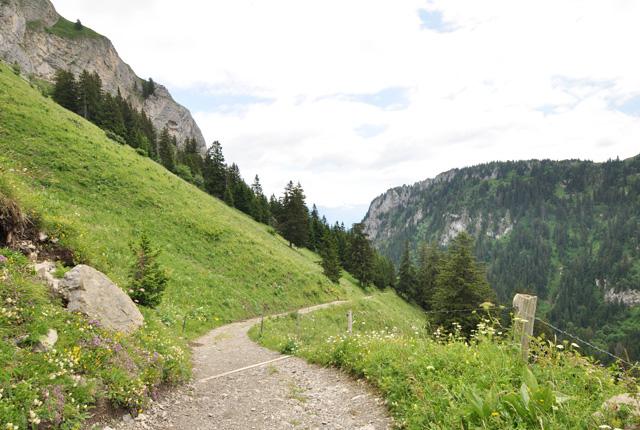 Sentier sur le Grammont Valais