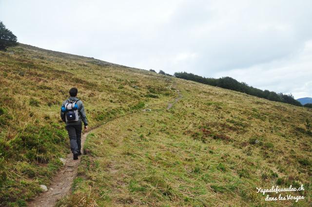 Le Tour du Kastelberg - Idée de randonnée dans les Vosges!