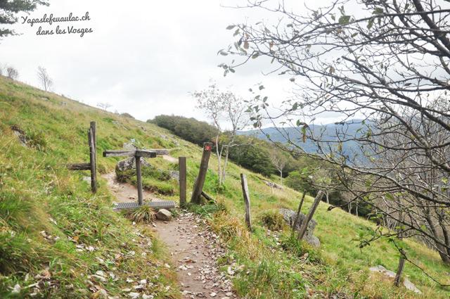 Balade dans les Vosges sur le Kastelberg