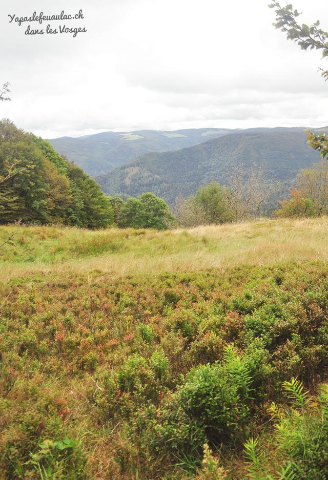 Idée de rando dans les Vosges sur le Kastelberg