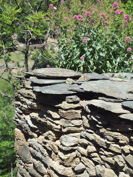Les pierres d'Evol