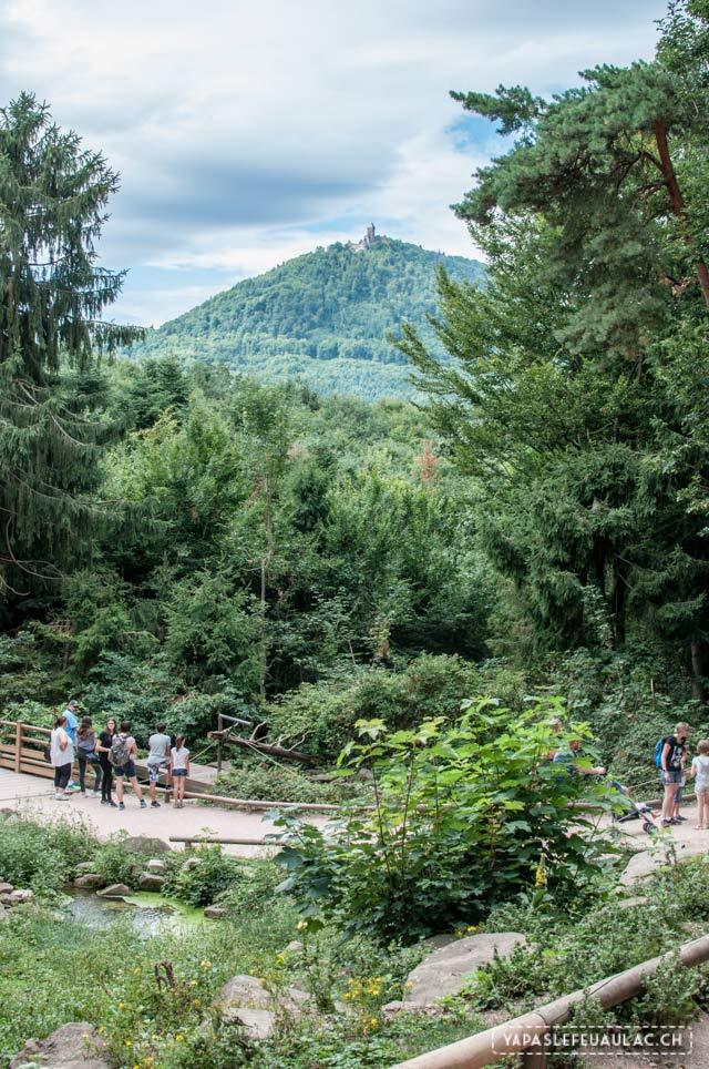 Que faire en un week-end autour de la Montagne des Singes? Mon programme, sur le blog suisse Yapaslefeuaulac.ch !