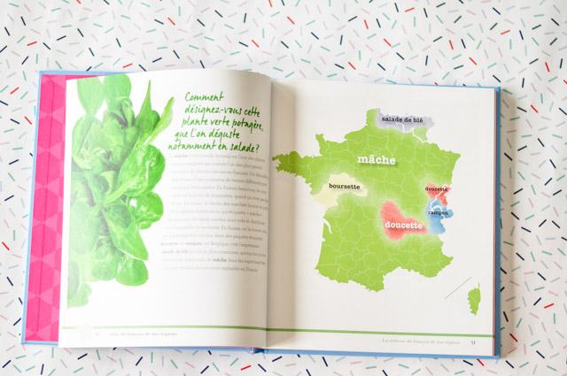 Comment appelle-t-on la mâche dans les différentes régions de France, de Suisse et de Belgique