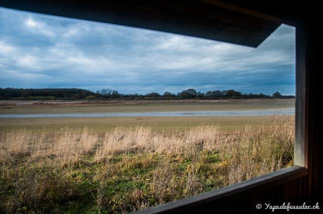 Idée de balade nature en Lorraine: l'étang de Lachaussée dans la Meuse