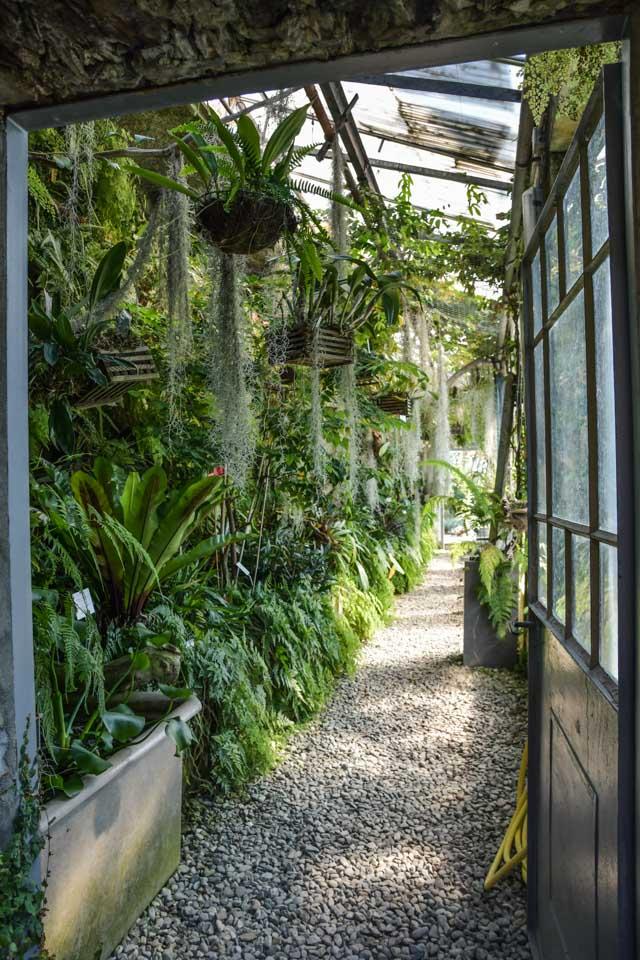 Que voir autour de Locarno? le jardin botanique du Tessin sur les iles de Brissago