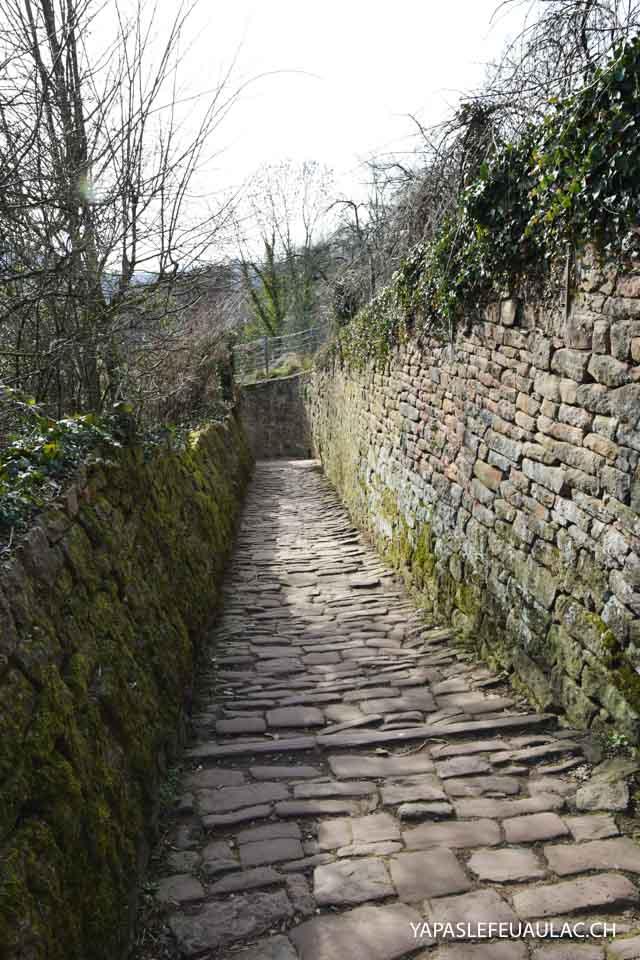 Le chemin des philosophes à Heidelberg