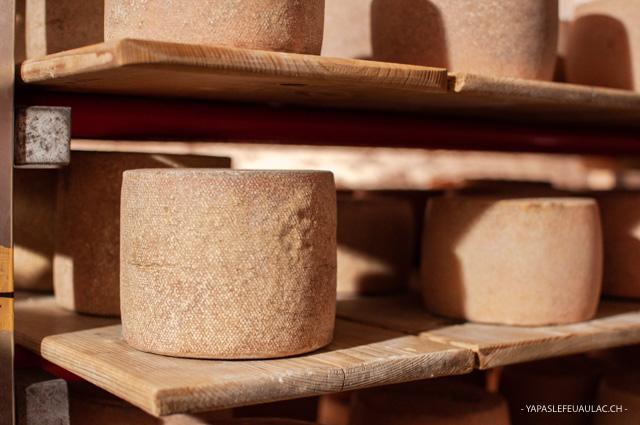 L'histoire de la tête de moine, ce fromage jurassien
