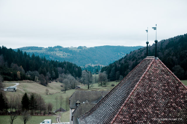 Franches-Montagnes: vue de Bellelay