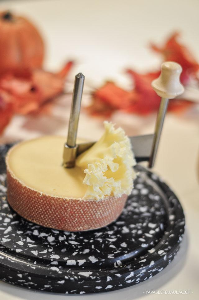 Une rosette (fleur de fromage) de tête de moine, un fromage suisse qui s'exporte autour du monde