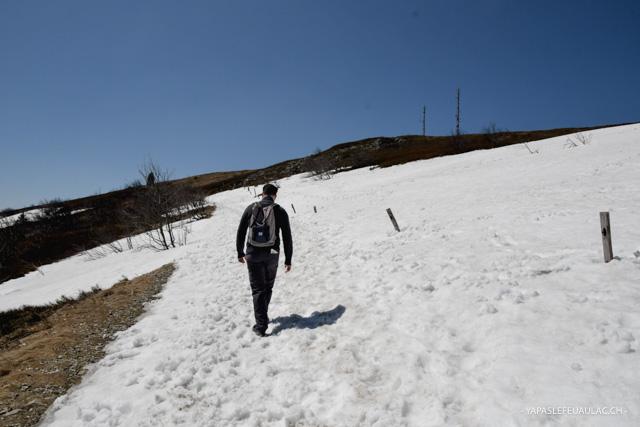 Une idée de randonnée dans les Vosges - Blog Yapaslefeuaulac.ch