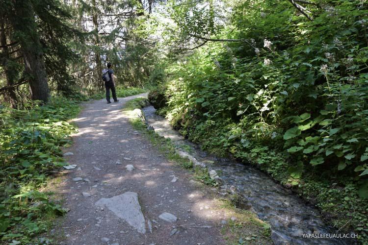 Le long du Chemin du Bisse à Vercorin, une balade paisible