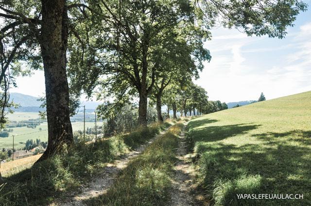 Autour des Ponts-de-Martel