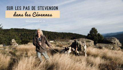 Se promener avec un âne sur les pas de l'écrivain Stevenson dans les Cévennes
