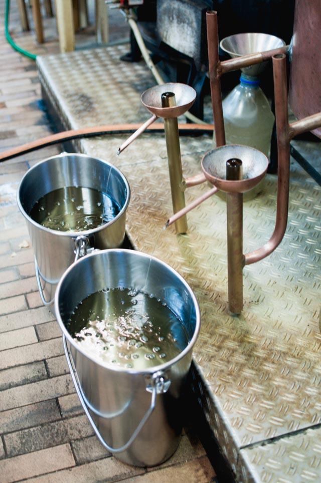 Distillation d'absinthe du Val-de-Travers chez Artemisia - Crédit Yapaslefeuaulac