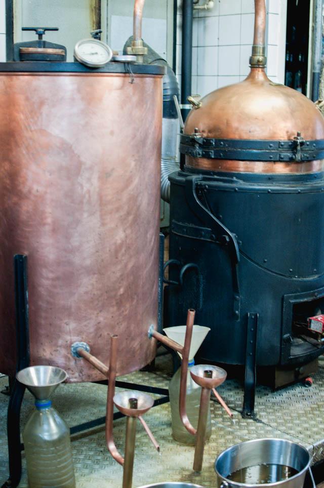 Distillation d'absinthe Crédit Yapaslefeuaulac