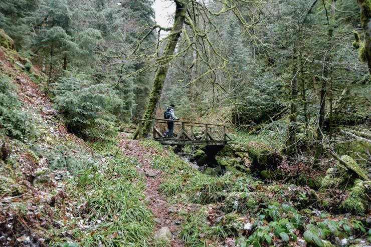 Rando à Gérardmer dans les Vosges