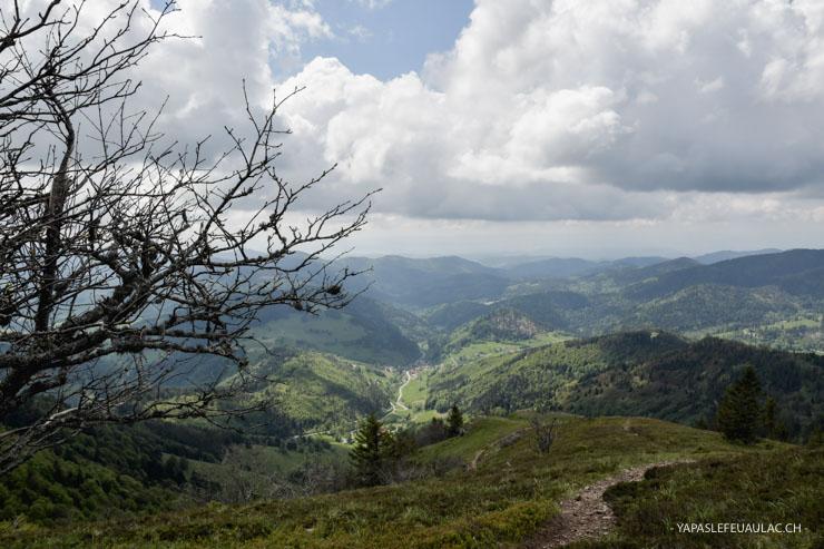 Balade sur le Belchen en Forêt Noire