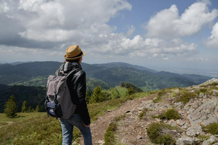 Trois idées de randonnée en Forêt Noire - Week-end en Allemagne
