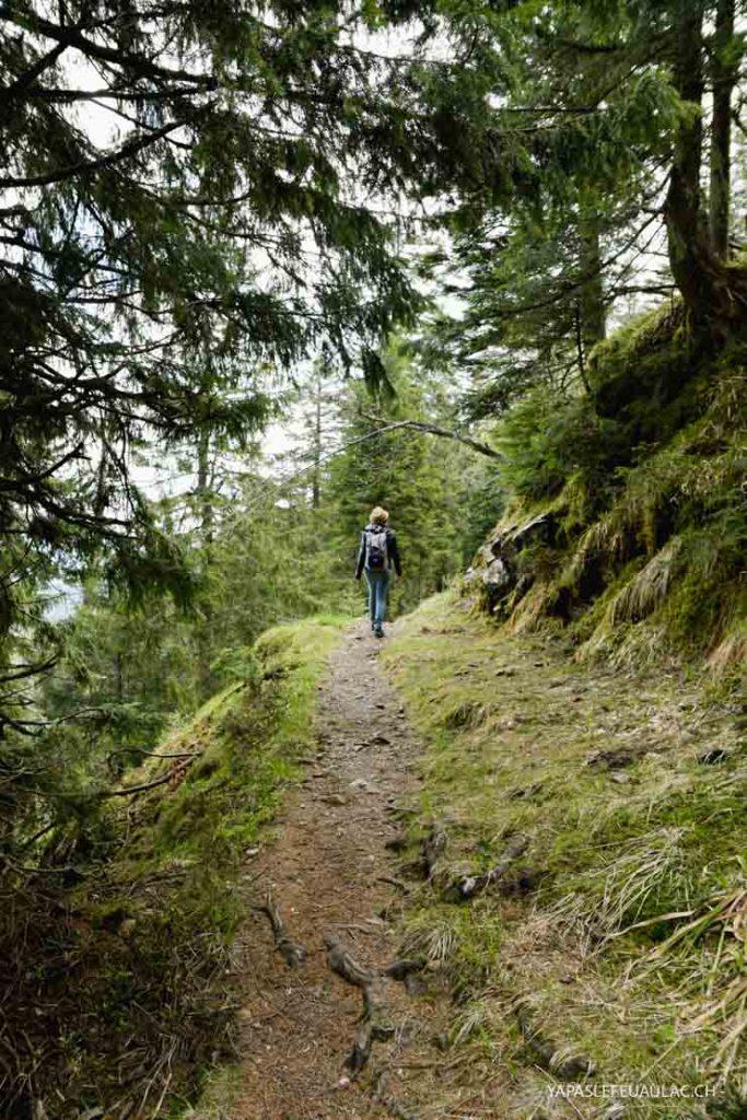 Randonner en Forêt Noire sur le Belchen