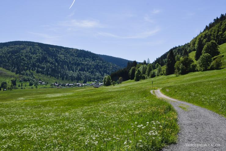 Geniesserpfad, rando tranquille en Forêt Noire du Sud autour de Menzenschwand