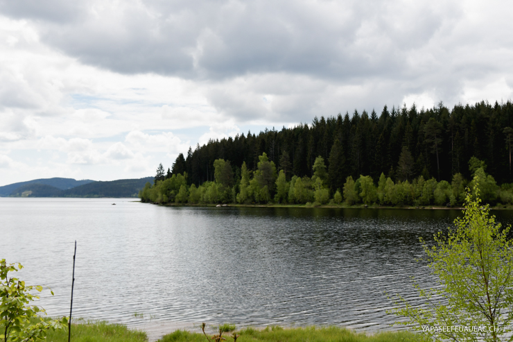 Balade autour du Schluchsee
