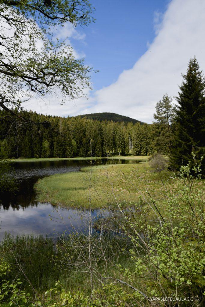 Les lacs de la Forêt Noire
