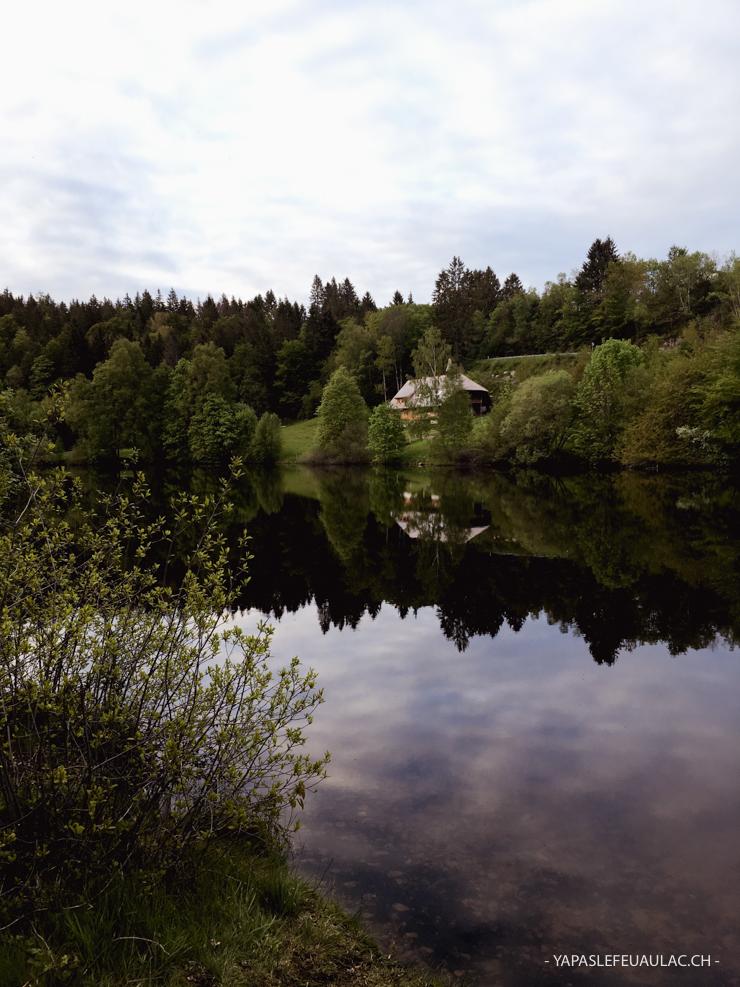 Adresse en Forêt Noire: le restaurant Klosterweiherhof autour de Sankt Blasien