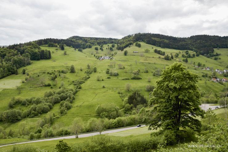 Week-end en Forêt Noire
