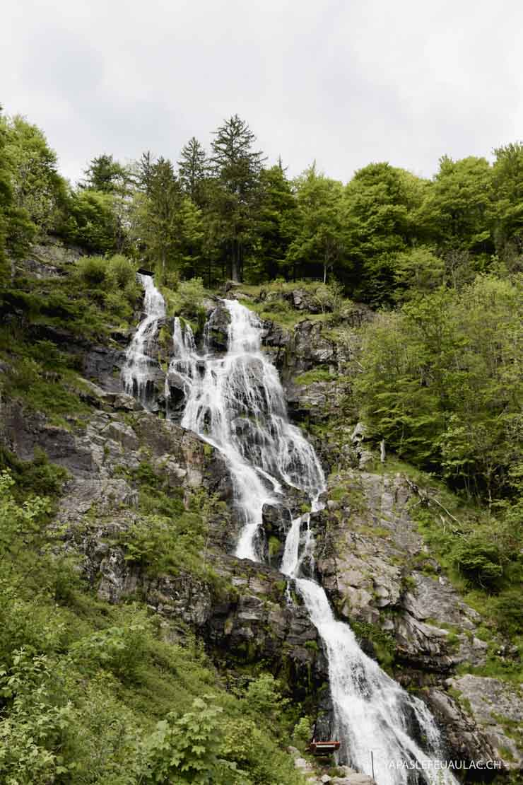 Incontournable d'un week-end en Forêt Noire du Sud, la cascade de Todtnau ♡